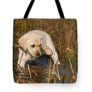 Yellow Labrador Retriever Puppy Standing In Water Tote Bag