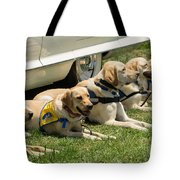 Yellow Labs In Training Tote Bag