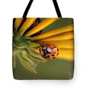 Yellow Lady - 3 Tote Bag