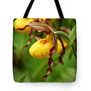 Yellow Lady Slipper Tote Bag