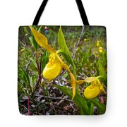 Yellow Lady Slippers Along Emerald Lake Trail In Yoho Np-bc Tote Bag