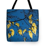 Yellow Leaves And Blue Sky In Autumn Tote Bag