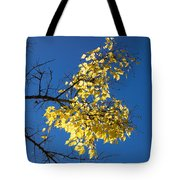 Yellow Leaves In Fall And Deep Blue Sky Tote Bag