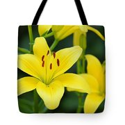 Yellow Lilly 8107 Tote Bag