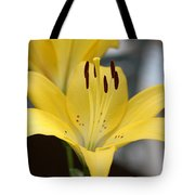 Yellow Lilly Tote Bag