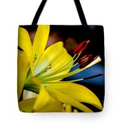Yellow Lily Anthers Tote Bag