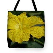 Yellow Luffa Blossom Tote Bag