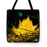Yellow Maple Leaf Tote Bag
