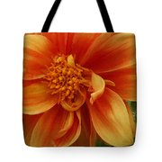 Yellow Orange Dahlia Tote Bag