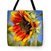 Yellow Orange Sunflower Tote Bag