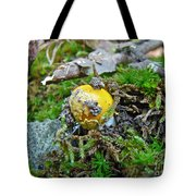 Yellow Patches Baby Mushroom - Amanita Muscaria Tote Bag