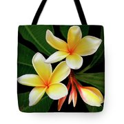 Yellow Plumeria Tote Bag by Ben and Raisa Gertsberg