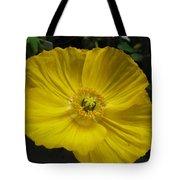 Yellow Poppie Tote Bag