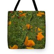 Yellow Poppies Dsc07460 Tote Bag