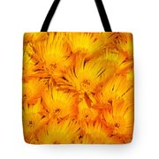 Yellow Radiance  Tote Bag