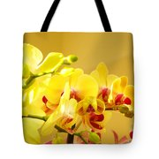 Yellow Red Orchid Flowers Art Prints Orchids Tote Bag