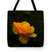 Yellow Rose Dapples With Waterdfrops Tote Bag