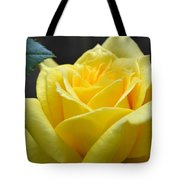Yellow Rose Ll Tote Bag