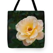 Yellow Rose Of Texas  Tote Bag