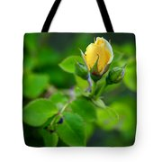 Yellow Rosebud Tote Bag