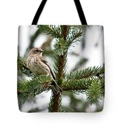Yellow Rumped Evergreen Tote Bag