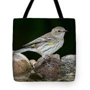Yellow-rumped Warbler Hen Tote Bag