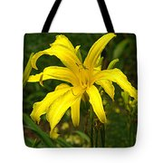 Yellow Spider Lily 21 Tote Bag