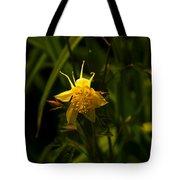 Yellow Splendor Tote Bag
