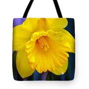 Yellow Spring Daffodil Tote Bag