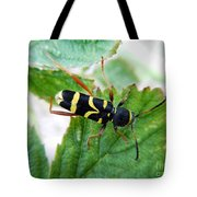 Yellow Stripped Beetle Tote Bag