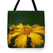 Yellow Sun Burst...   # Tote Bag