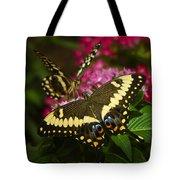 Yellow Swallowtail Butterflies  Tote Bag