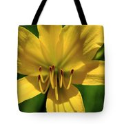 Yellow Too Lily Flower Art Tote Bag