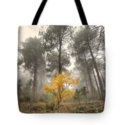 Yellow Tree In The Foggy Forest Tote Bag