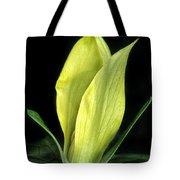 Yellow Trillium Tote Bag
