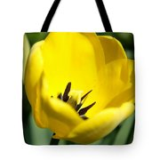 Yellow Tulip Cup Tote Bag