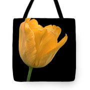 Yellow Tulip Open On Black Tote Bag