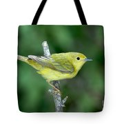 Yellow Warbler Dendroica Petechia Female Tote Bag