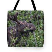 Yellowstone Munching Moose Tote Bag