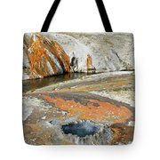 Yellowstone Small Crested Pool Tote Bag