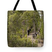 Yellowstone Wolves Tote Bag
