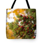 Taxus Baccata Or Yew Red Fruits On Twig  Tote Bag