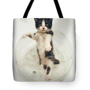 Yin Yang Kitten Tote Bag