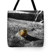 Young Bird Exploring Tote Bag