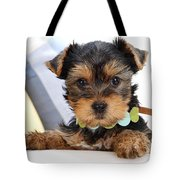 Yorkshire Terrier Puppy Tote Bag