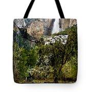 Yosemite Apple Orchard  Tote Bag
