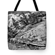 Yosemite Fallen Tree Tote Bag