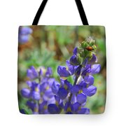 Yosemite Lupine And Ladybug Tote Bag