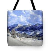 Yosemite National Park Winter Tote Bag