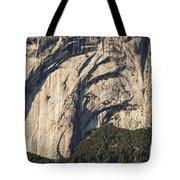Yosemite Rock Detail Tote Bag